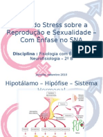 Stress Sexualidade 01