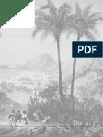 Dois Anos no Brasil.pdf