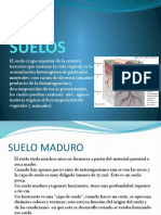 SUELOS.pptx