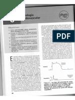 Physioex - Ejercicio 6 - Fisiología Cardiovascular