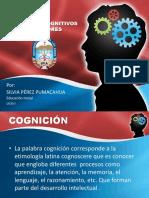 procesos cognitivos superiores