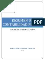 RESUMEN CONTABILIDAD PUBLICA COMPLETO TODAS LAS BOLILLAS PDF.pdf