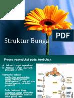 Struktur Bunga Dan Beda Monokot Dikot.pptx