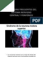 Equipo 1 Sx Neurona Motora Hemiparesia y Debilidad Muscular