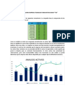 Analisis Balance Finaciero Grupo 10 EMPRESA TIG