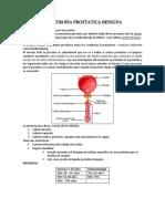 Hipertrofia Prostatica Benigna