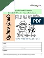 EXAMEN 5° GRADO CUARTO BIMESTRE 17-18