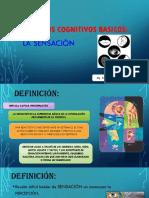 Procesos Cognitivos Basicos- Sensación