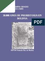 30 Mil anos-de-Prehistoria-en-Bolivia.pdf