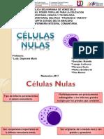Sistema Hematopoyetico Presentacion