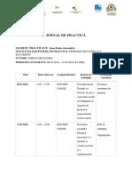 Activitati Practica Primaria Sector 2