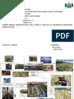 Agricultura Urbana Tema 4 y 5