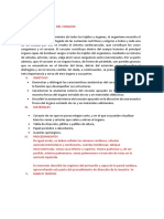 Anatomia Funcional Del Corazon p5
