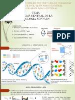 Dogma Central de La Biologia