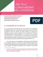 Diseno Del Sur Interculturalidad en La v(2)