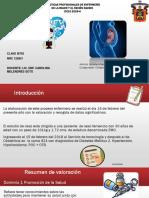 PROCESO DE ATENCION DE ENFERMERIA PACIENTE DE OBSTETRICIA