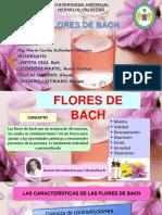 Concepto de Flores de Bach