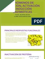 FENÓMENOS-DE-INHIBICIÓN-ACTIVACIÓN-E-INDUCCIÓN-ENZIMÁTICAS.pptx