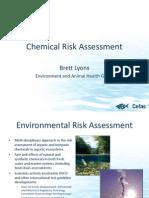 Apeg Chemical Risk Assessment 100625063938 Phpapp02