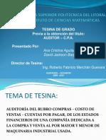 Diaspositivas de Presentación de Tesina de Auditoria Financiera Para Auditor - CPA