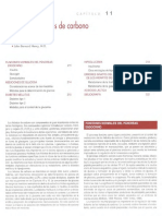 Hidratos de Carbono-1