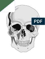 huesos.docx