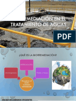 Biorremediació n en El Tratamiento de Aguas