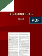 Genus Foraminifera