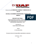 PLAN-DE-TESIS-ANEMIA-FERROPENICA (1).docx