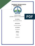 Diagrama de Procesos de Al Industria Maderera (1)
