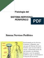 239916738 7 Fisiologia Sistema Nervioso Periferico