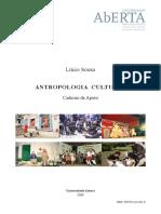 LSousa 2008 Antropologia Cultural 41008