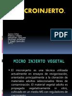 El Microinjerto