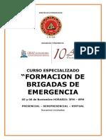 BRIGADAS-ICA.pdf