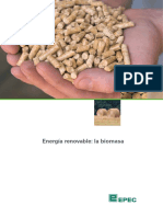 1.Biomasas.pdf