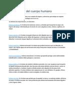 Los sistemas cuerpo humano.doc