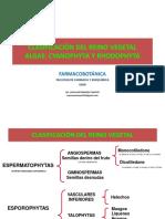 ALGAS primera parte- farmacobotanica 2014-I- UNID12.pdf