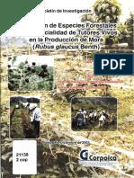 Evaluación de Especies Forestales Con Potencialidad de Tutores Vivos en La Producción de Mora.