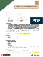 Informe Final Aplciacion 12 SESIONES DEVIDA 2017