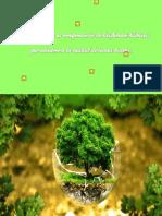 - Recuperación de Las Fuentes Hídricas de La Sierra Nevada[1]