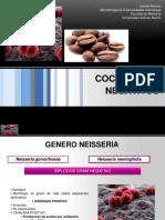 Clase 11. Cocos Gram Negativos.pdf