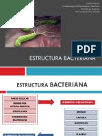 Clase 6. Estructura Bacteriana y Patógenicidad