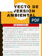 Proyecto de Inversion Ambiental