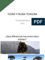 Flora y Fauna Tchilena