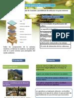 Polinización general.pptx