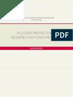 Silva-Henriquez - Acciones Protectoras de Derechos Fundamentales