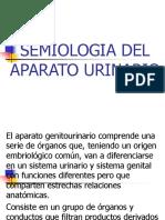 Diapositivas Del Aparato Urinario