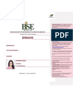 Rúbrica Ensayos BISE Sep 2017
