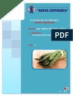 254859997 Proceso y Cultivo Del Esparrago Verde en La Libertad FINAL