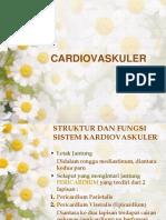 Anfis Dan Pengkajian Cardiovaskuler